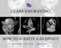 How to Achieve a 3D effect to your glass engraving using silicone polishers. With the help of wildlife engraver, Alan Sinclair,  Eternal Tools demonstrates how different tools can help you achieve 3D effects with mini rubber silicone pin polishers and knife edge silicone polishers along with diamond point burrs for fur and feather details on glass