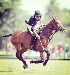 Polo Horse, Horse Fashion, Sport Of Kings, Polo Club, Storyboard, Equestrian, Pony, Art Gallery, Horses