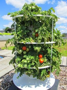 outdoor hydroponic garden towers - Google Search