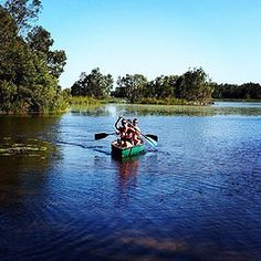 Trio paddling along the upper Noosa River. A great way to meet new friends! www.canoediscovery.com   #regram from @dontshootruthphotography   #noosariver #noosaeverglades #canoe #tour #thediscoverygroup #visitnoosa #visitsunshinecoast #visitqueensland #Se