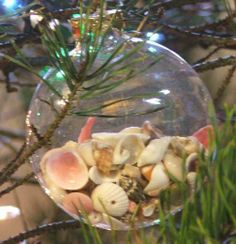 christmas tree decorated with sea shells   Christmas tree ornaments