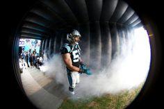 Luke Kuechly Panthers Football, Football Players, Middle Linebacker, Luke Kuechly, Carolina Panthers, Man Alive, Real Women, Athletes, Husband