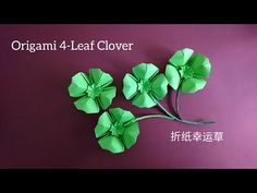 Origami Clover/ Paper Lucky Clover 折纸幸运草 Origami Star Box, Origami And Kirigami, Origami Paper Art, Origami Stars, Origami Easy, Origami Tooth, Origami Folding, Oragami, Paper Folding