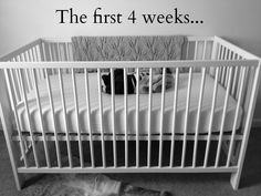 I Can't Live Without | great advice on this blog re: baby essentials for the first few weeks Baby On The Way, Baby Makes, Everything Baby, Baby Needs, Baby Time, Baby Bumps, Baby Essentials, Baby Fever, Future Baby