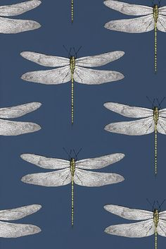 Shop for Wallpaper at Style Library: Demoiselle by Harlequin. An up-scaled delicately drawn dragonfly motif is placed. Harlequin Wallpaper, Wall Wallpaper, Fabric Wallpaper, Cloakroom Wallpaper, Wallpaper Toilet, Wallpaper Ideas, Wallpaper Feature Walls, Pattern Wallpaper, Large Print Wallpaper