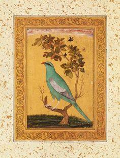 Art 11th century India - Green Bird, Mughal