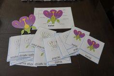 kreatywnyMaks: Kwiat - budowa