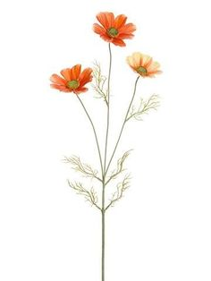 Spray in Peach Coral - TallSilk Cosmos Spray in Peach Coral - Tall Snowy Mauve Magnolia Artificial Christmas Flowers - Tall Artificial Cornflower Artificial Cosmos Spray, Pink Cosmos Flowers, Fake Flowers, Yellow Flowers, Artificial Flowers, Silk Flowers, Draw Flowers, Tropical Flowers, Flowers Today, Flower Sketches