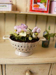 Mis flores, mis muebles, mis tesoros en miniatura