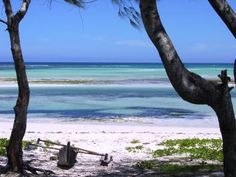 Pemba Mozambique- Going here: 20 days and counting. Glory