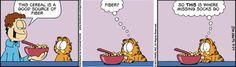 Garfield Cartoon for May/24/2012