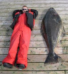 Small kid or big fish or both? Halibut fishing at Langara Island Lodge. Charlotte City, Halibut Fishing, Pacific Salmon, Haida Gwaii, Famous Sports, Fishing Adventure, Sport Fishing, Canada Travel, Beautiful Islands