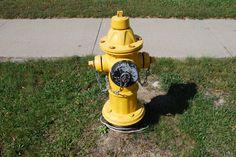 Hydrant/Etobicoke, Ontario