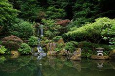Japanese Garden - Portland, Oregon - Rate My Garden Organic Gardening, Gardening Tips, Leaf Clean Up, When To Plant Seeds, Core Aeration, Yard Maintenance, Garden Care, Planting Seeds