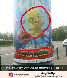 Anti Memes, Wtf Funny, Funny Memes, Polish Memes, Aesthetic Memes, Nyan Cat, Mood Pics, Man Humor, Best Memes