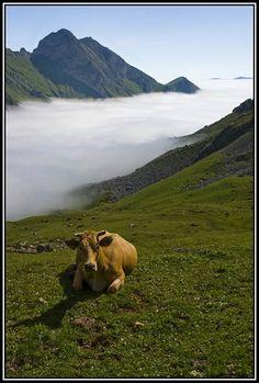 Uno de las paisajes más bonitos, un mar de niebla en el valle, en el Parque Natural de Las  Ubiñas- La Mesa. Asturias