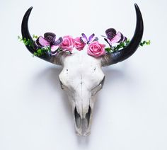 Cow Skull, Animal Skull, Skull, Taxidermy, Skull, Bison, Animal Skulls, Faux Taxidermy, Painted Skull, Cow Skull Australia, Home Decor