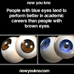 22 Best Blue Eyes images in 2015 | Blue eye facts, Blue eyed people
