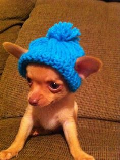OMG, I love my new hat. It even has holes for my ears to stick out…