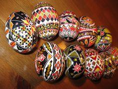 Romanian Handmade Pysanky Bucovina Easter Duck Egg Handpainted 1 Lot of 10