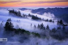 Land of Dreams by vjamesphoto  beautiful beauty california fog forest hiking magic mountain outdoors san francisco sky summer trave