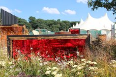 RHS Tatton Park Flower Show (24/07/14)