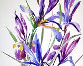 Global Gallery 'Iris' by Elena Dolci Painting Print on Wrapped Canvas Size: 1 Painting Frames, Painting Prints, Watercolor Paintings, Canvas Fabric, Canvas Art, Canvas Prints, Canvas Size, Iris Bouquet, Gallery Frames