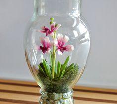 Miniature Exotic Vanda Orchid Terrarium by Miss Moss Gifts