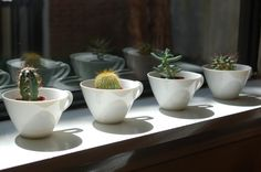 yay! tea cup garden- for those chipped cups that I just couldn't throw away