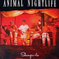 "Animal Nightlife, ""Shangri-La"", 1985"