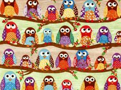 cute colorful owls