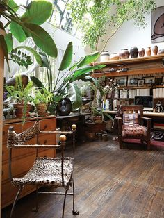 British Colonial Style, Curated by the Interior Outlet Castle Hill. Style At Home, Interior Exterior, Interior Design, Interior Ideas, Interior Plants, Plantas Indoor, Deco Nature, New York Homes, Design Case