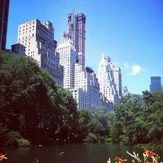 Central park #bigcity #NYC #central park