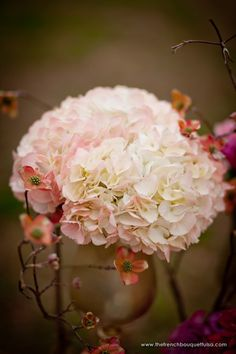 Google Image Result for http://thefrenchbouquettulsa.com/blog/wp-content/uploads/2011/10/Fluffy-and-Fabulous-White-Pink-Hydrangea-Blush-Pink-Flowers-by-The-French-Bouquet-Imago-Vita-Photography.jpg