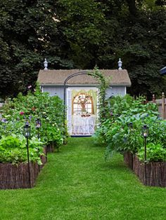 Great idea: These symmetrical raised beds create a runway to an arbor and garden shed.