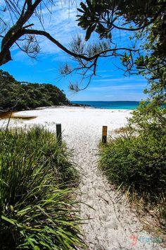 Seamans Beach, Jervis Bay, Australia Bon spot pour snorkelling (plongée avec masques et tubas) --> dauphins à voir !