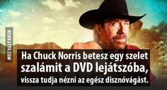 vicces, humor, poén Cuck Norris, Wholesome Memes, Funny Moments, Puns, Funny Jokes, Haha, Funny Pictures, Reading, Quotes