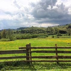 Bucovina, plai cu flori  #romania #suceava #bucovina #instalike #like4like #instapic #instadaily #travel #travelgram #neverstopexploring #landscape #wonderful #haisitu  www.haisitu.ro