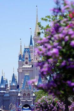 Unknown Castle - This is fantastic. Castle Best Cookie Snacks in Walt Disney World Cinderella Castle at the Magic. Disney Theme, Disney Art, Disney Dream, Disney Love, Walt Disney World, Prince Charmant, Photo Deco, Pinturas Disney, Landscape Photography