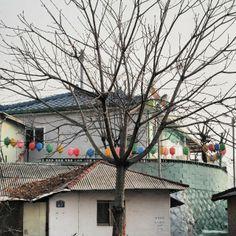 .@kimtaeoung | #korea #한국 #원주 #원주모습 #원주여행 #김태웅이야기 #원동 #골목 #일상사진 | Webstagram