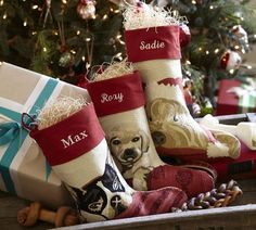 Omg its a must!!! I have a little boston and this stocking is perfect!