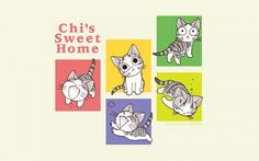 Chi ◊ from ◊ chi's sweet home is a cute, friendly kitten. Funny Cat Memes, Funny Cat Videos, Cute Wallpaper Backgrounds, Cute Wallpapers, Chi's Sweet Home, Tv Tropes, Christmas Nativity Scene, Bad Kids, Bd Comics