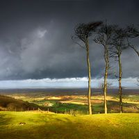 Capture a Stormy Skies at Chanctonbury Ring image on a designer roller blind at Creatively Different Blinds. Stormy Skies at Chanctonbury Ring blinds from just Philip Johnson, April Showers, Summer Time, Landscape Photography, Blinds, Vineyard, England, Country Roads, Sky