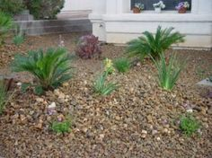 Landscaping Las Vegas, Las Vegas Landscaper, Landscape Maintenance, Patios, Irrigation, Stonework, Lighting, Rocks and more