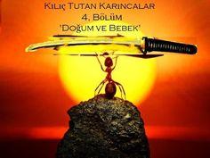 Kılıç Tutan Karıncalar 'Doğum ve Bebek'