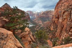 Canyon Overlook | The canyon overlook in Zion National Park … | Flickr