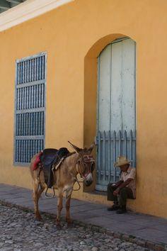 Desmesurada paciencia - Trinidad, Sancti Spiritus, Cuba http://www.cuba-junky.com/sancti-spiritus/trinidad-home.htm
