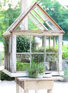 Repurposed Windows made into a Lovely Greenhouse from erins art and gardens: garden folly (old windows and shutters are available at the Habitat for Humanity ReStores) Home Greenhouse, Small Greenhouse, Greenhouse Gardening, Greenhouse Ideas, Container Gardening, Portable Greenhouse, Greenhouse Wedding, Old Window Greenhouse, Miniature Greenhouse