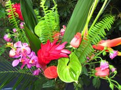 Last May I decided to throw a Havana Nights themed party in my parent's backyard. Here is what I came up with for the decor! Lots of tropic...