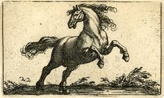 D'après Antonio Tempesta, Plate 22: A rearing horse; turned to the right, facing left (engraving and etching)
